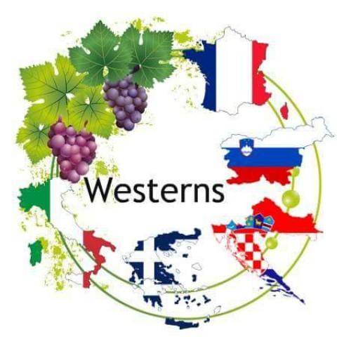 Erasmus+ WESTERNS